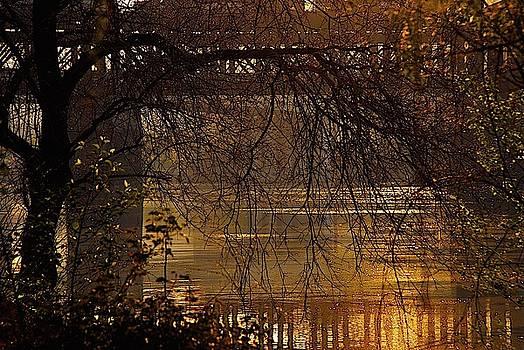 Golden Dawn by J Henderson