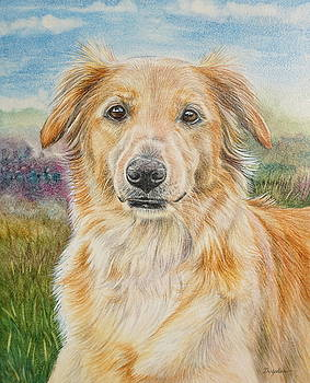 Golden Dog by Gail Dolphin