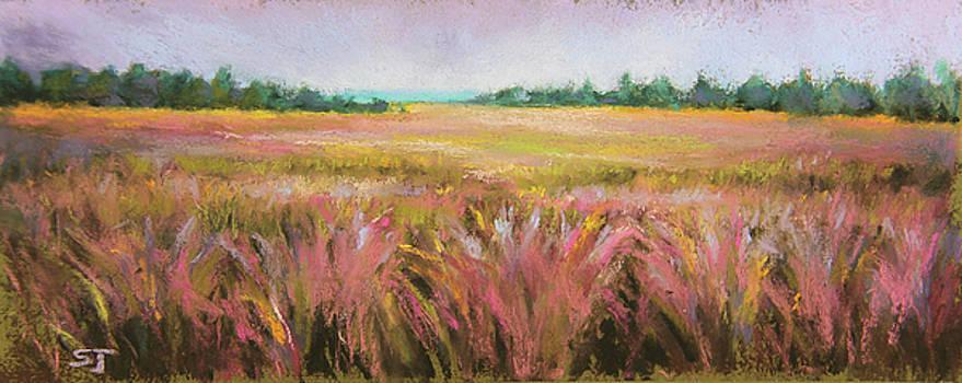 Golden Field by Susan Jenkins