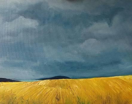 Golden Fields by Fiona Jack