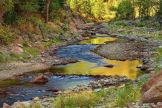 Golden Fishing Stream by James BO Insogna