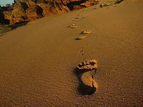 Golden Footprints by Meika Quinn