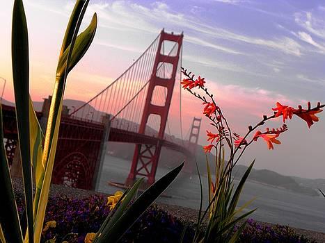Elizabeth Hoskinson - Golden Gate Garden View