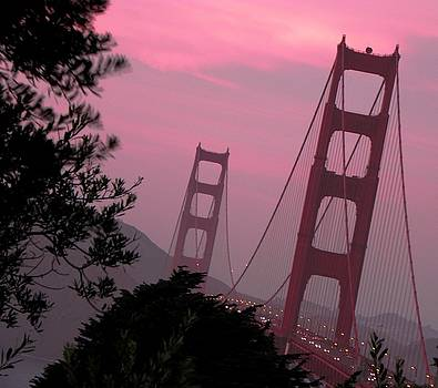 Elizabeth Hoskinson - Golden Gate Pink Moment