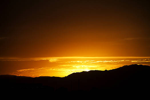 Golden Glow of the Desert by Mike Hill