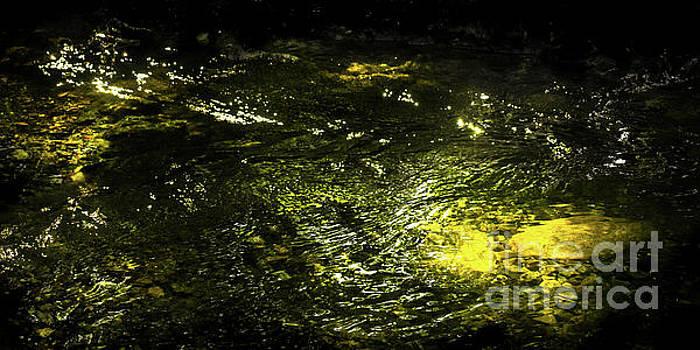Golden glow by Tatsuya Atarashi