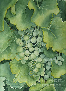 Golden Green Grapes by Jackie Kirby
