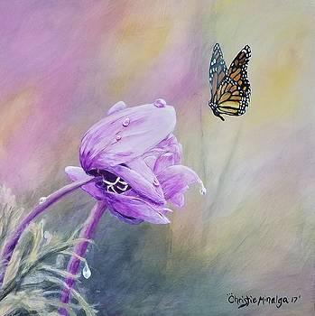 Golden hour by Christie Minalga