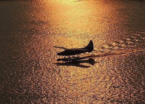 Golden Landing by Red Cross