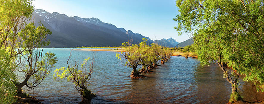 Golden Light on the Lake shore at Glenorchy Wharf by Daniela Constantinescu
