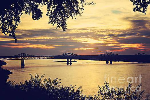 Golden Mississippi River Sunset by Joan McCool