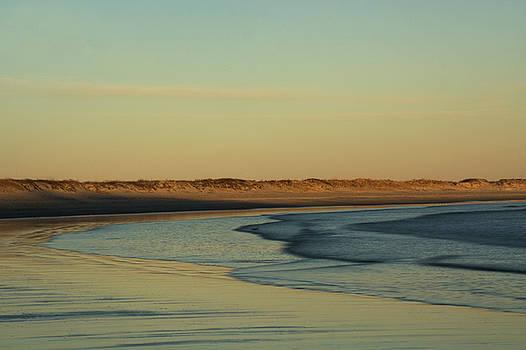 Golden Morning on Rhode Island Coast by Nancy De Flon