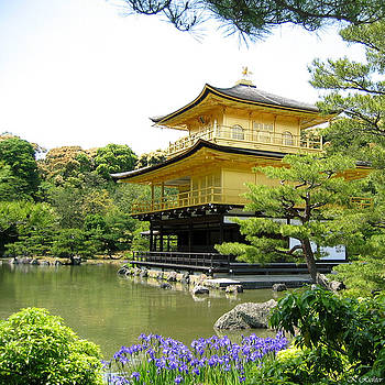 Golden Pavilion by Keiko Richter