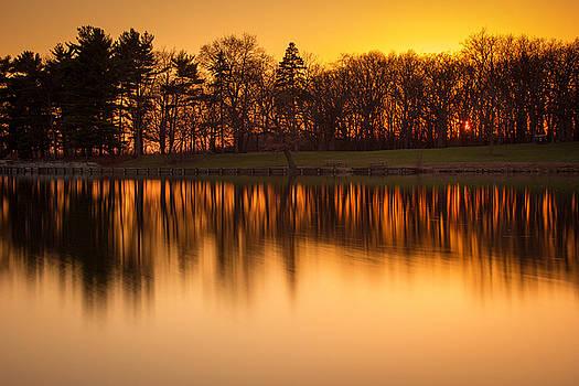 Golden Pond by Jackie Novak