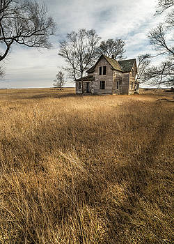 Golden Prairie  by Aaron J Groen
