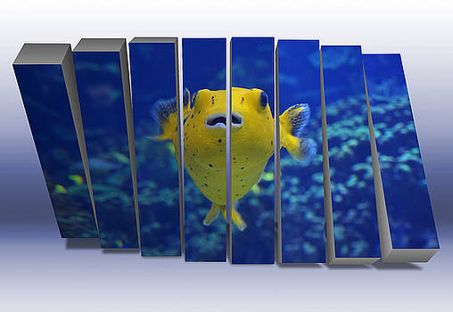 Golden Puffer by Marvin Blaine