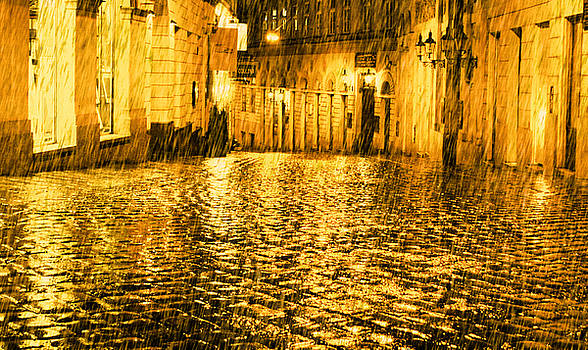 Jonny Jelinek - Golden Rain in Vienna at Night