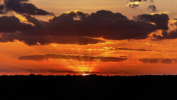 Golden Rays of Sunset by Stephen Anderson