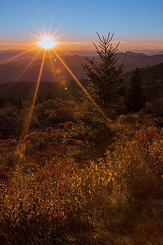 Golden Rays On The Parkway by ChrisAntoniniPhotography