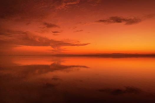 Golden Reflection by Nazeem Sheik