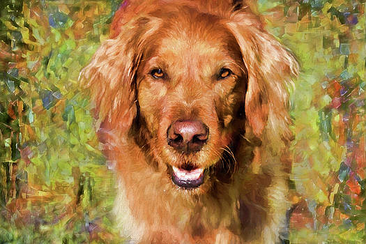 Peggy Collins - Golden Retriever Art - Happy to See You