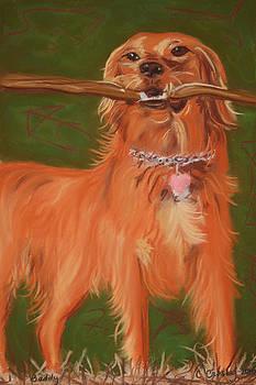 Golden Retriever Joy by Christine Crosby