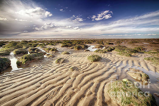Golden sand lines and seaweed rocks of Norfolk by Simon Bratt Photography LRPS