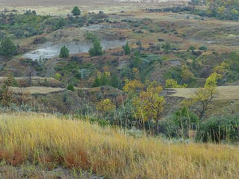 Golden September Prairie by Cris Fulton