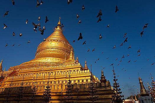 Golden Shwezigon by Marji Lang