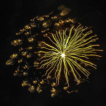 Paula Porterfield-Izzo - Golden Fireworks