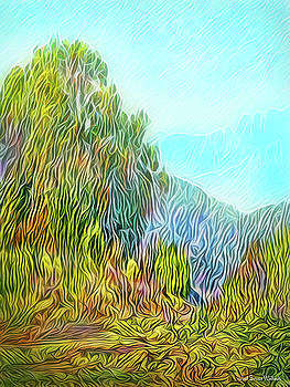 Golden State Mountain Vista by Joel Bruce Wallach