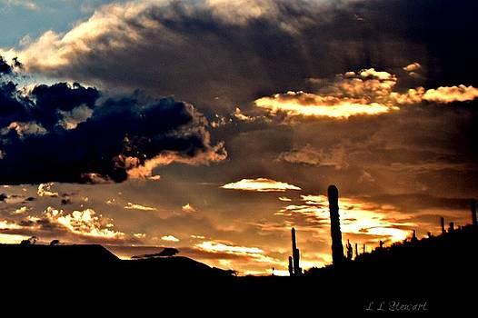 Golden Storm by L L Stewart