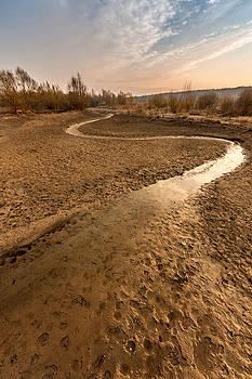 Golden stream by Davorin Mance