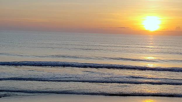 Golden Sunrise 2 by Brenda Stevens Fanning