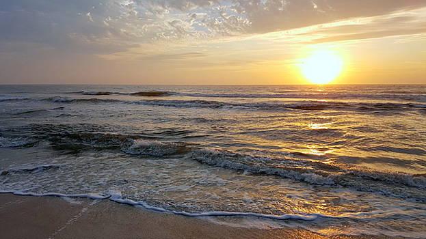 Golden Sunrise 3 by Brenda Stevens Fanning