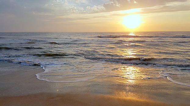 Golden Sunrise 4 by Brenda Stevens Fanning
