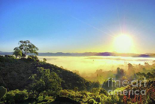 Golden Sunrise by John Castell