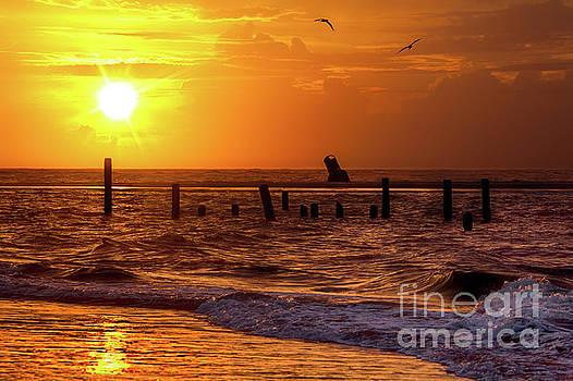 Dan Carmichael - Golden Sunrise on the Outer Banks
