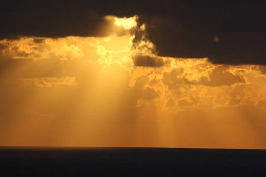 Golden Sunset by Cheri Carman