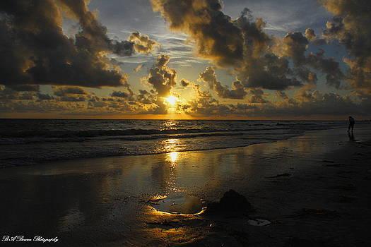 Barbara Bowen - Golden Sunset from Indian Shores