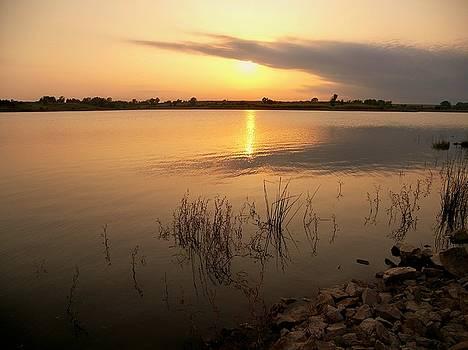 Golden Sunset by Jim  Darnall