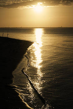 Golden Sunset by Kelly E Schultz