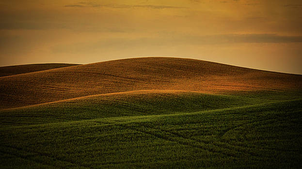 Golden Sunset on the Palouse by Jerry Fornarotto