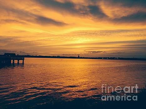 Golden Sunset over St. Johns River by Mitzisan Art LLC