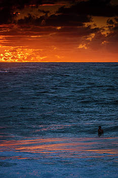 Golden Surf by LiveforBlu Gallery