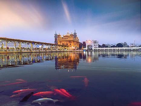 Golden Temple by Sunman Studios