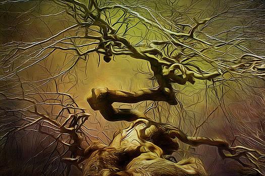 Golden Tree by Cindi Ressler