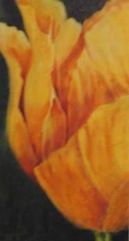 Golden Tulip by Selma Cooper