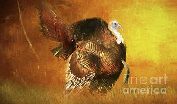 Golden Turkey Art by Geraldine DeBoer