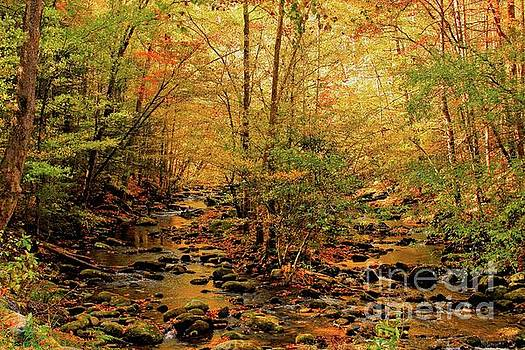 Golden Twin Creek by Geraldine DeBoer